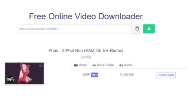 How to use YTMP3Juice.org Video Downloader